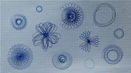 Rosettes Drawing on Paper HD Stock Footage