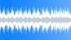 Acoustic Loop - 29 Stock Music