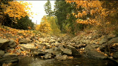 Creek autumn dolly hd 35mm 04 Stock Footage
