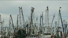 Shrimp boats in Key West Stock Footage