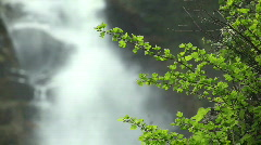 Waterfall with green leaves - stock footage