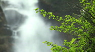 Waterfall with green leaves Stock Footage
