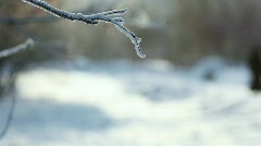 Frosty day. Stock Footage