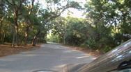 Forest Roads Of Starkey Wilderness Park  Stock Footage