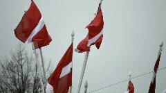 Latvian flags Stock Footage