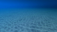 Sea Bottom Stock Footage
