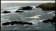 Beautiful Pacific Coast View with Birds and Cliffs Stock Footage
