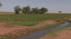 Irrigation in the Desert Stock Footage