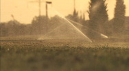 Stock Video Footage of sprinklers at sunset