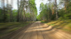 forest road - stock footage