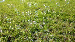 soap bubbles over grass - stock footage
