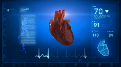 Human heart with pulse trace monitor - stock footage