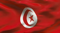 Creased MOROCCAN flag in wind - slow motion - stock footage