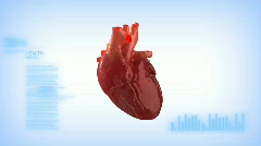 Human heart monitor concept Stock Footage