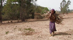 Ethiopia: Girl carries firewood on back Stock Footage