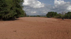 Kenya: Dry River bed Stock Footage