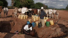 Kenya: Woman gets water from a hole dug in a dry riverbed. Stock Footage