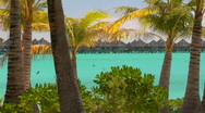 Stock Video Footage of Tahitian palm trees blow in the wind with turquoise water and huts in the