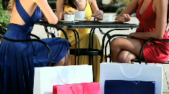 Elegant Lifestyle Shopping - stock footage