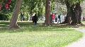 College Campus 1 Footage
