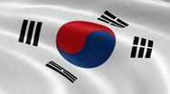 SouthKorea FlagInTheWind Stock Footage