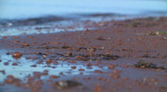 Stock Video Footage of Red pebbles and waves 2