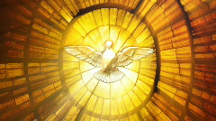 Stained Glass Vatican dove (Loop) - stock footage