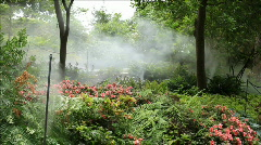 Water mist in garden Stock Footage
