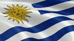 Uruguay FlagInTheWind - stock footage