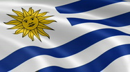Uruguay FlagInTheWind Stock Footage