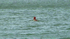 Ocean Swimmers San Francisco Bay 06 Stock Footage