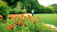 Woman walks past garden Stock Footage