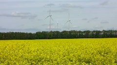 Rapeseed field and wind turbines  Stock Footage