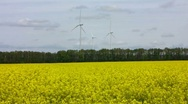 Stock Video Footage of rapeseed field and wind turbines
