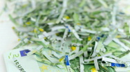 Slow flyover shredded euro money Stock Footage