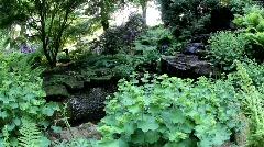 ZEN Relax, Botanic Garden 3130 Stock Footage