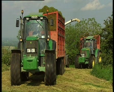Grass harvest - stock footage