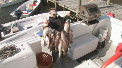 Stock Video Footage of Redfish Fishing