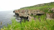 Green grass on a sea coast Stock Footage
