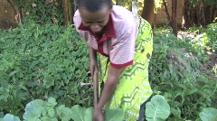Tanzania: Woman works in her garden Stock Footage