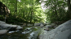 Smokey Mountain stream pan left Stock Footage