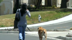 Woman Walking Dog Stock Footage