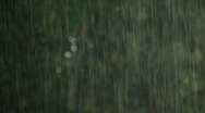 Rain Background Stock Footage