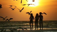 Beach Lifestyle Stock Footage