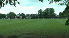 Playing Cricket Stock Footage