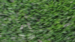 Stock Video Footage of Dizzy Spins Above Grass
