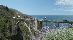 Bixby Creek Bridge, Big Sur, and wildflowers Stock Footage