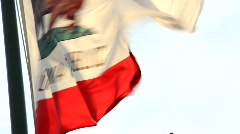 Windy California Flag Stock Footage