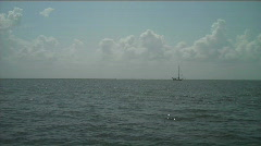 sailboat1 - stock footage