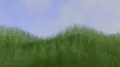 Grass animation Stock Footage